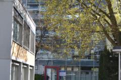 Gustav-Mie-Haus, Blick auf den Eingangsbereich © C. Staeves & M. Kuta 2012