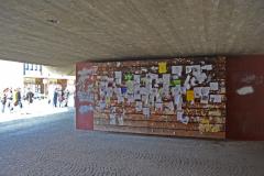 Informationsaustausch von Freiburger Studierenden © R. Gschwendtner 2012